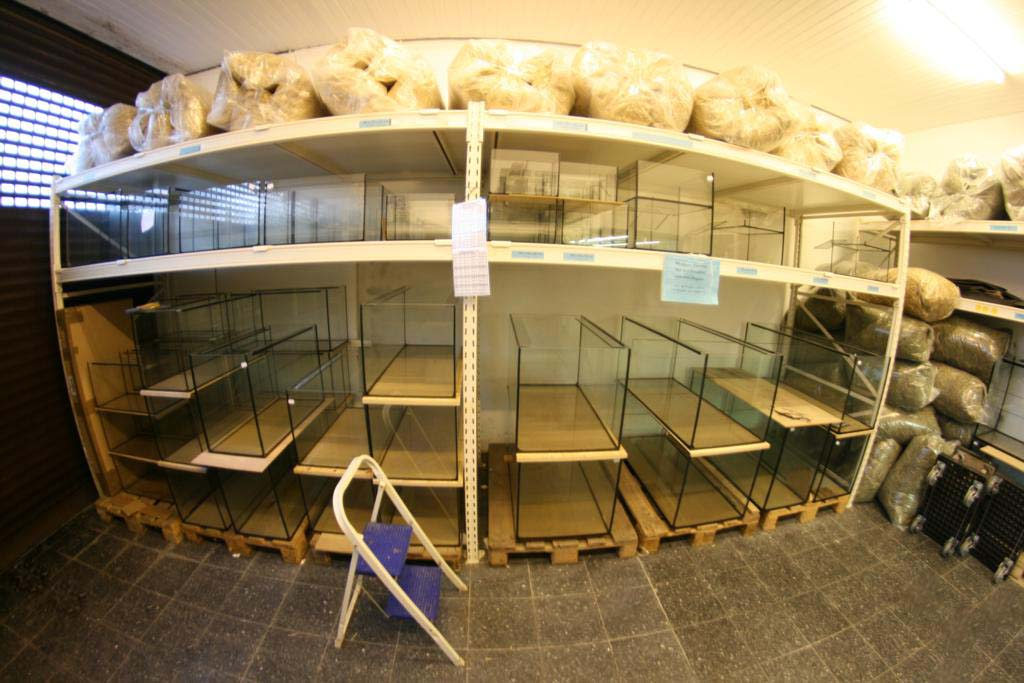 Zoobereich Regal Aquarienbau